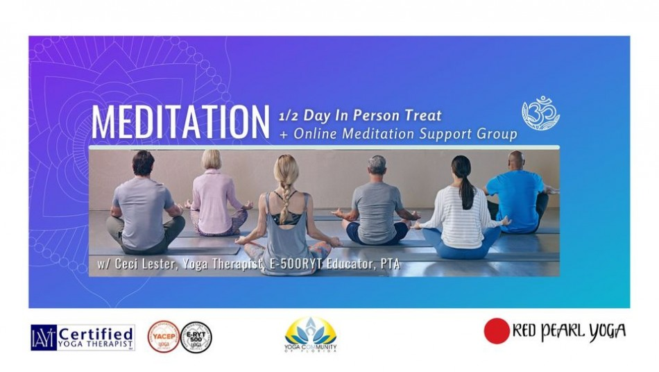 Meditation 1/2 retreat and support on line