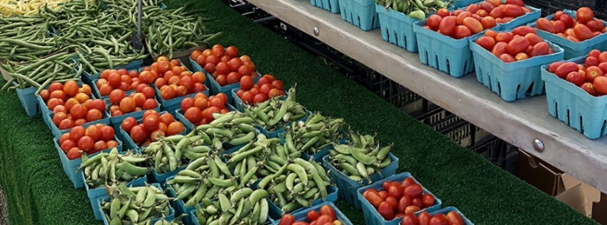 Venice Farmers Market Every Saturday!