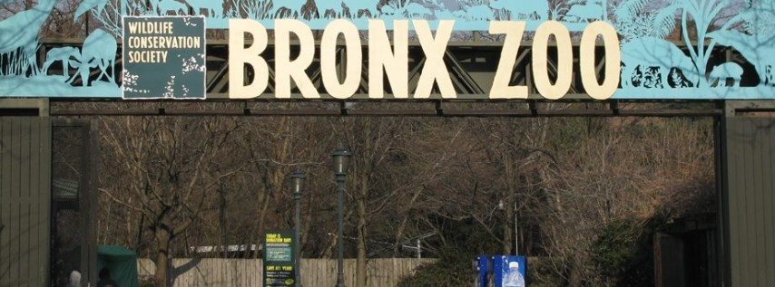 Free Days at The Bronx Zoo