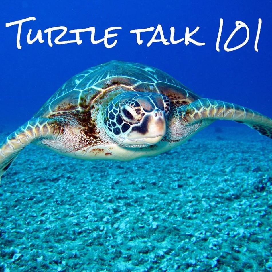 Turtle Talk 101 (Online Registration Required)