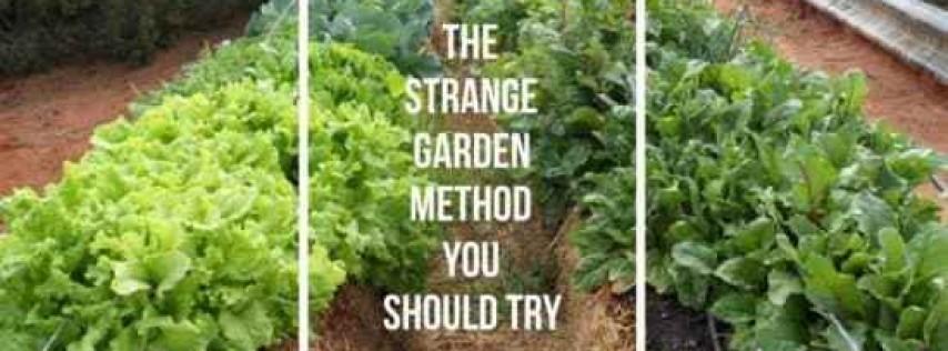 Hay Gardening 4/18/2021 (Sponsored)