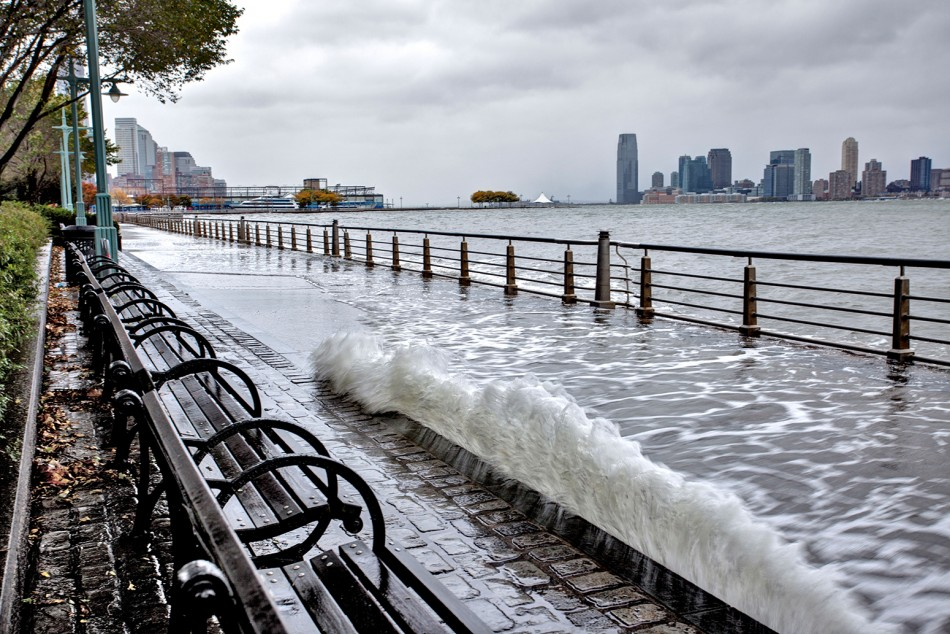 Courageous by Design: Landscape Architects Confronting the Climate Crisis in New