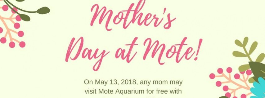 May 12: Mother's Day Freebie at Mote Aquarium