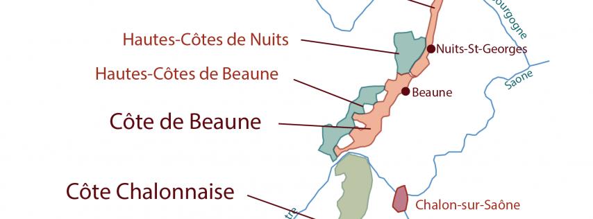 Wine Education 201: Burgundy