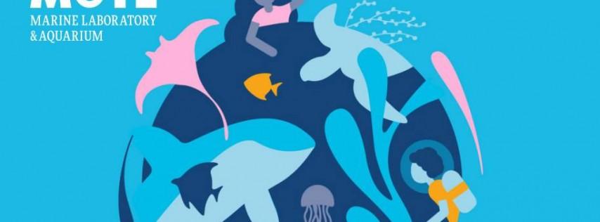 World Oceans Day Family Festival