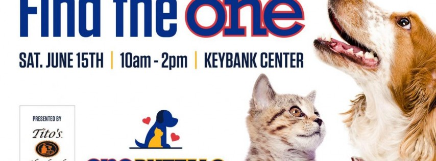 One Buffalo Pet Adoption presented by Tito's