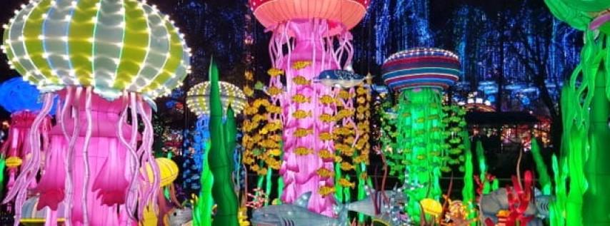 Luminosa Miami Chinese Lantern Festival