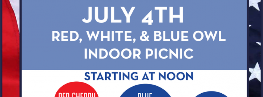 Red, White, & Blue Owl Indoor Picnic