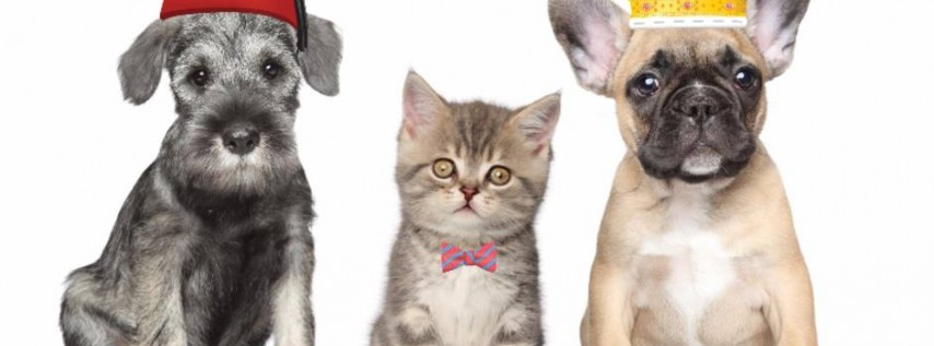 Community Pet Shot clinic in Valrico