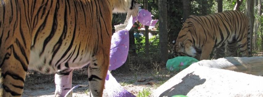 Boo at the Zoo at Naples Zoo