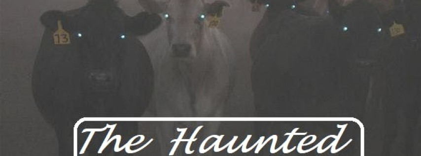 The Haunted Pasture: Florida's Scariest Attraction