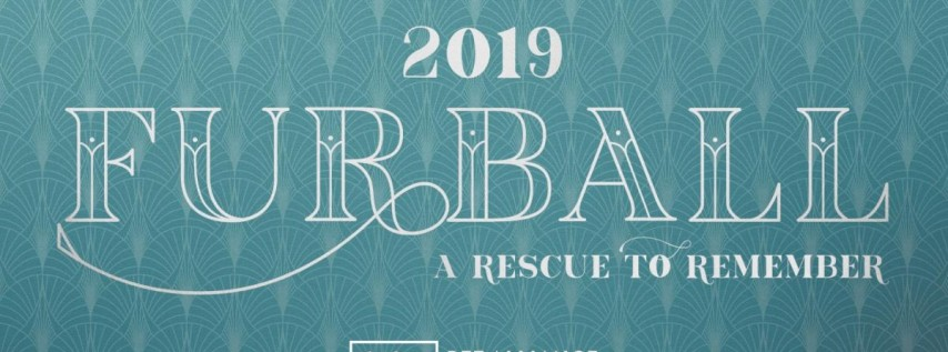 Furball 2019 - A Rescue to Remember
