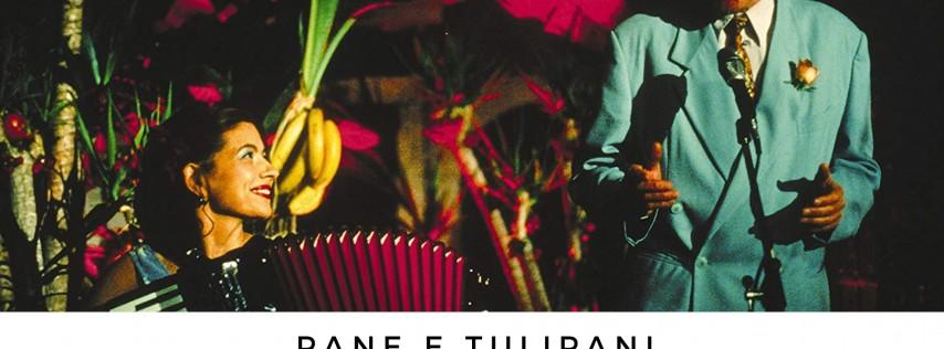 Movie Night: Pane and tulipani