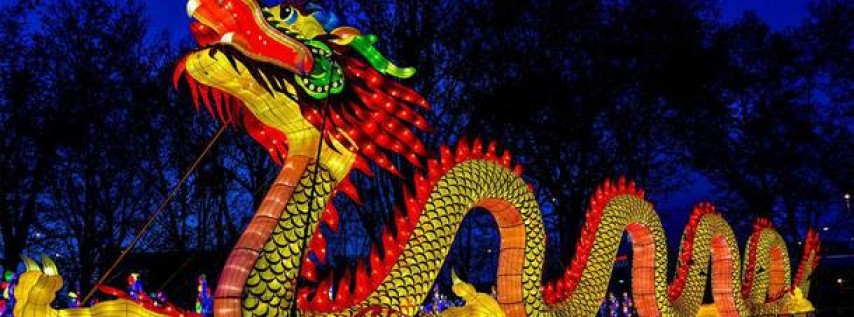 Chinese Lantern Festival China Lights