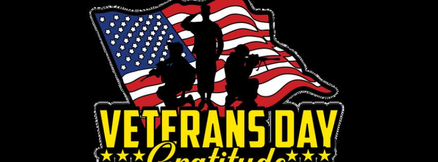 2019 Veteran's Day 1M, 5K, 10K, 13.1, 26.2 - Orlando