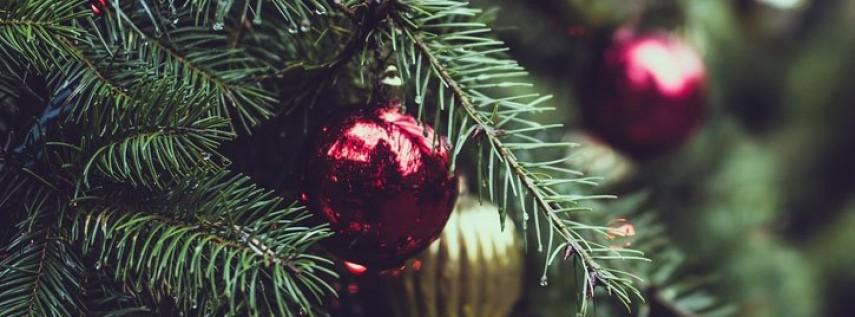 RLNP Christmas PARK MINI 2019