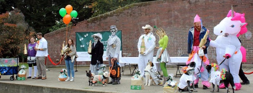 Halloween Pet Parade in Volunteer Park