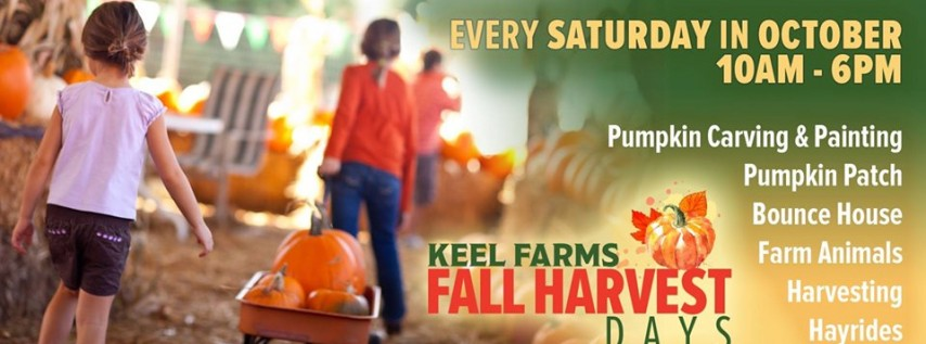 Fall Harvest Days at Keel Farms