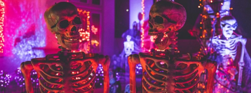 Halloween at Hotel San Jose!