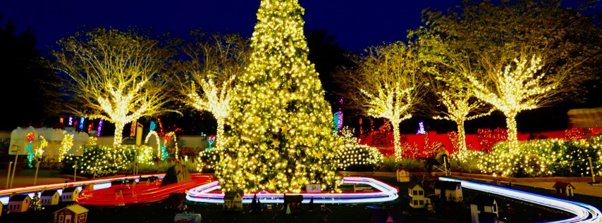 Holiday Lights at the Florida Botanical Gardens 2019