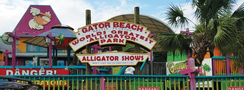 Copy of Gator Experience VIP 2019 Fall Season