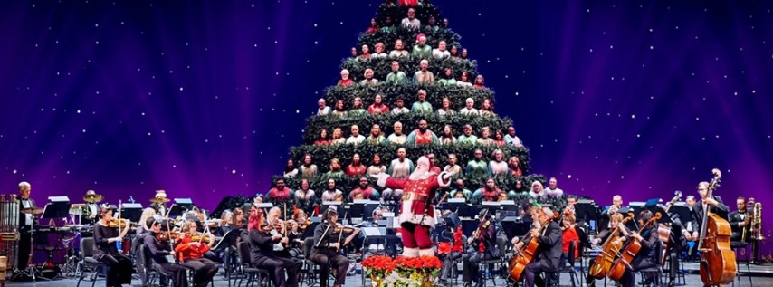 Magic of Christmas and The Singing Christmas Tree