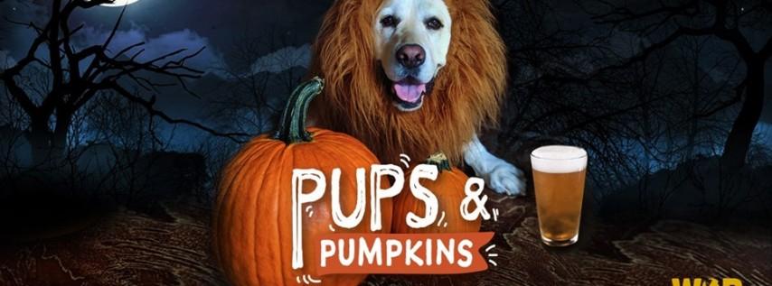 Pups 'n Pumpkins