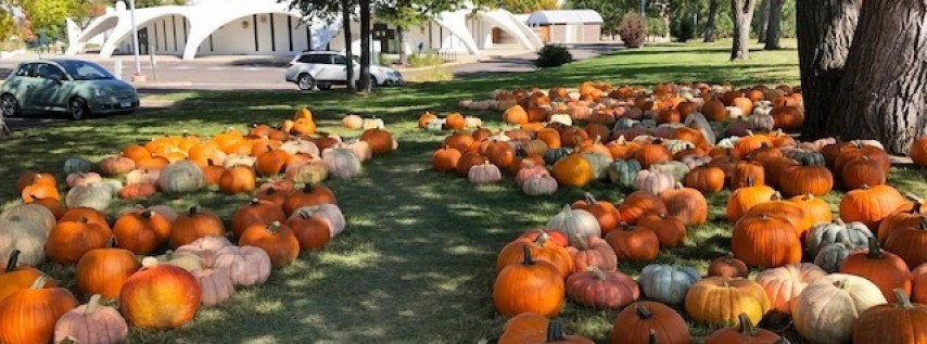 Fall Pumpkin Patch Benefiting Habitat Denver
