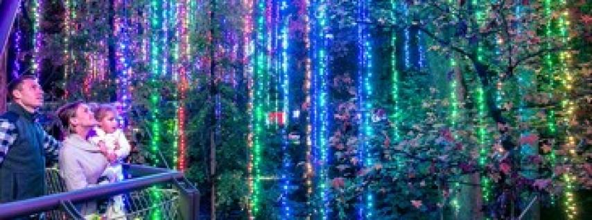 Garden Lights - Holiday Nights at Atlanta Botanical Garden