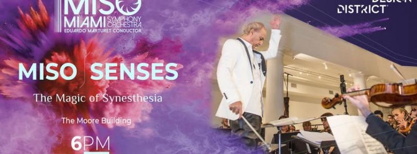 MISO- SENSES The Magic of Synesthesia