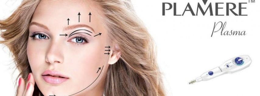 MIAMI AREA Plamere Plasma Training $3400 November 25 & 26