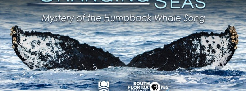 Free Screening Mystery of the Humpback Whale Song