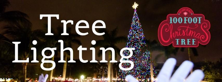 100 Ft. Christmas Tree Lighting