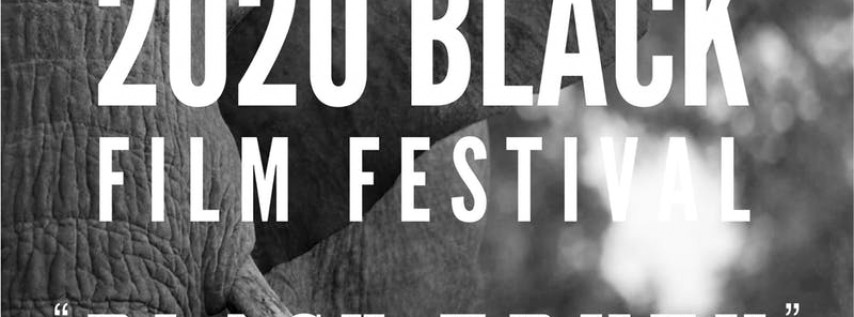 2020 'Black Truth' Film Festival