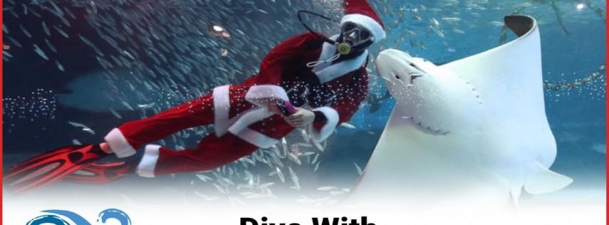 Dive with Santa