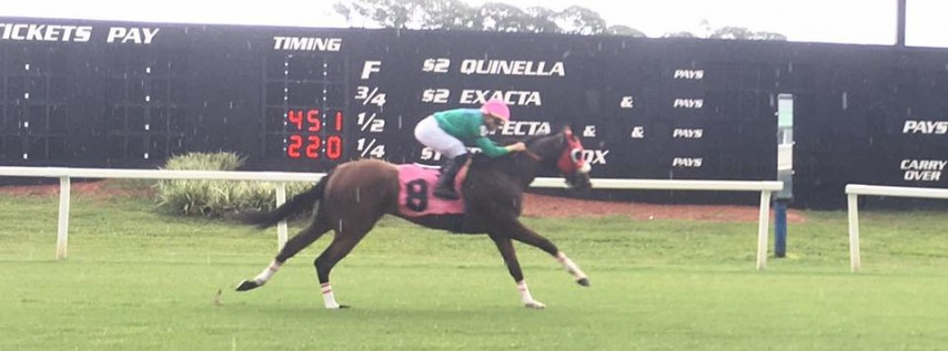 Stakes Saturday at Tampa Bay Downs December 14th