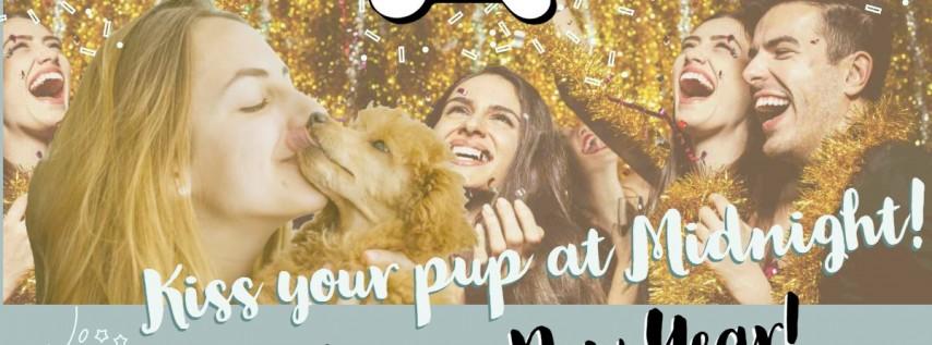 New Year's Kiss at Dog Bar