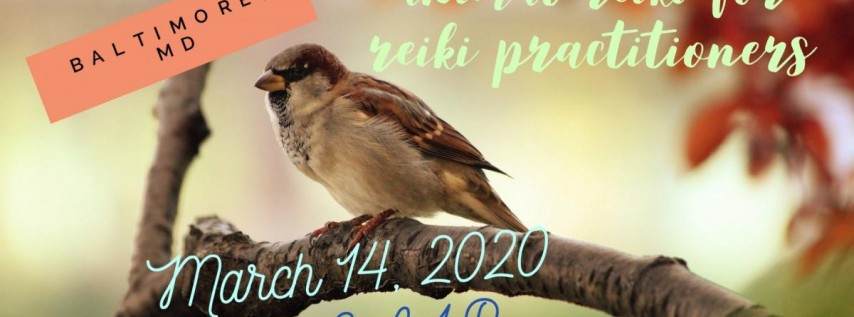 Animal Reiki for Reiki Practitioners