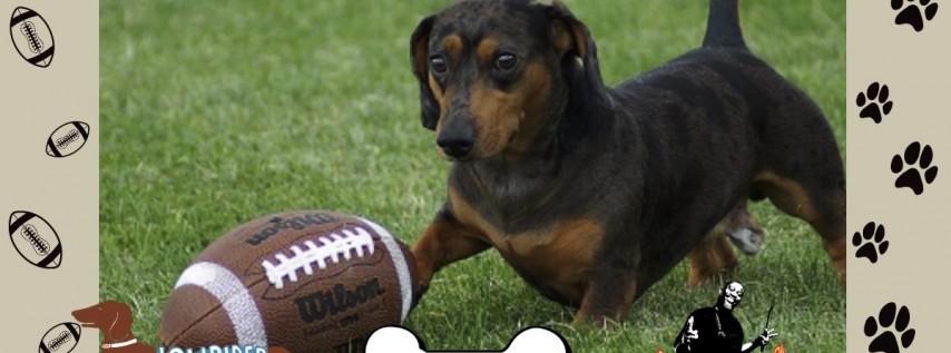 Woofball Puppy Bowl at Dog Bar