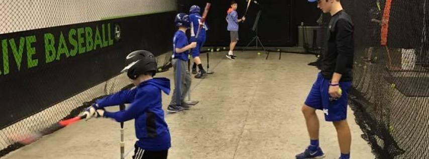 Line Drive Baseball