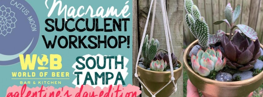 South Tampa Galentine's Happy Hour Succulent Workshop