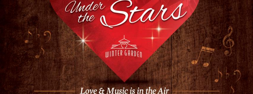 Serenade Under the Stars