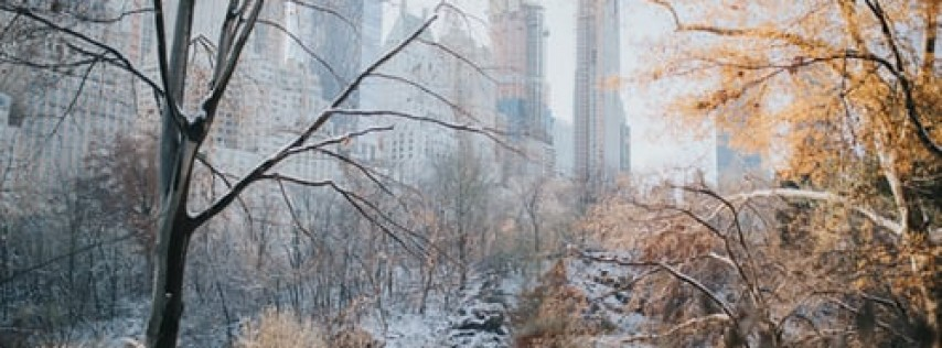 Central Park Conservancy Valentine's Day Stroll