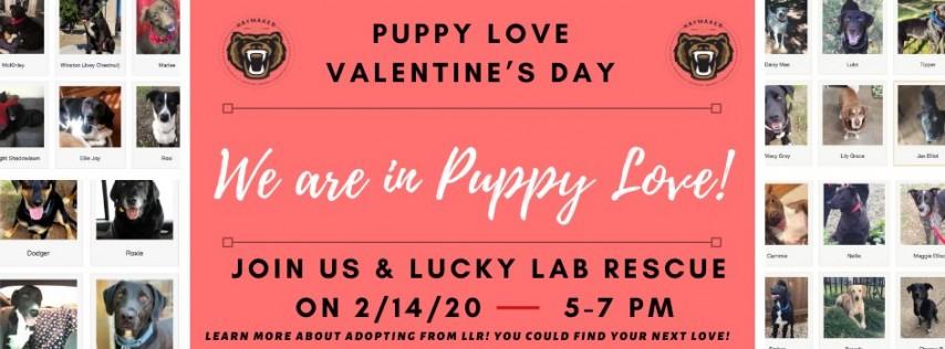 Puppy Love Valentine's Day!