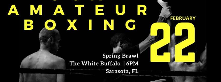 USA Boxing: Spring Brawl
