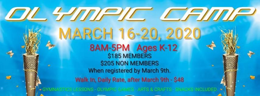 Spring Break Olympic Gymnastics Camp