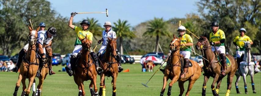 Sunday Polo at the Sarasota Polo Club