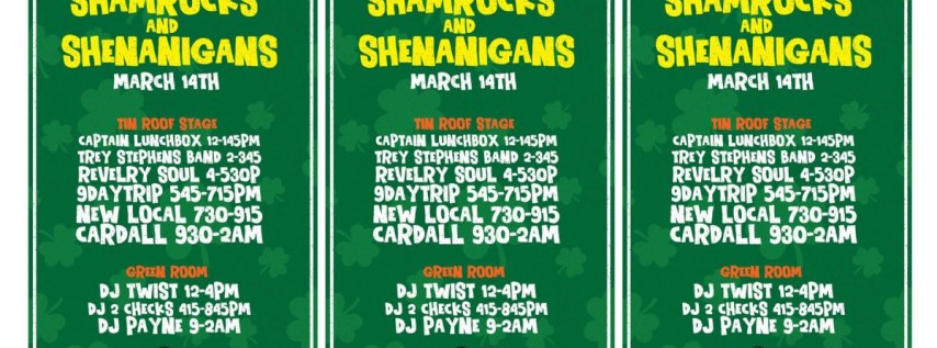 Shamrocks and Shenanigans - St Pattys Party