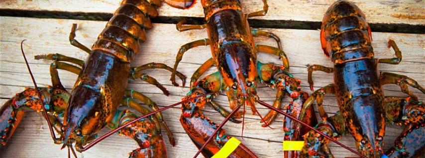 Fredericksburg Lobster Festival - Weekend Two