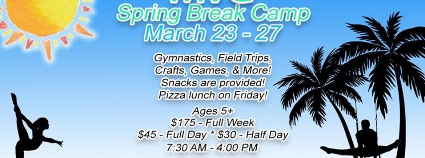 Spring Break Gymnastics Camp